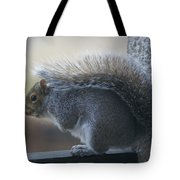 Fighting The Wind Chill Tote Bag