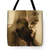 Fildel Castro  Tote Bag