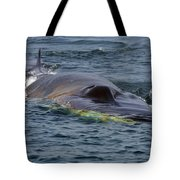 Fin Whale Charging Tote Bag