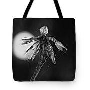 Finale Bw Tote Bag