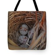 Finch Nest With Eggs  Tote Bag