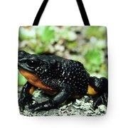 Fire-bellied Frog Atelopus Ignescens Tote Bag