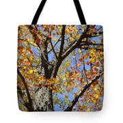 Fire Maple Tote Bag by Luke Moore
