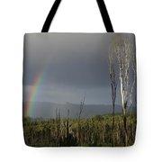 Fire Rainbow Tote Bag