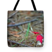 First Autumn Tote Bag