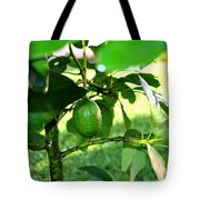 First Avocado Tote Bag