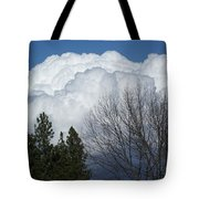 First Day Of Spring 2012 Tote Bag