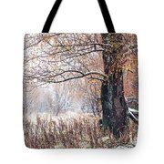 First Snow. Old Tree Tote Bag by Jenny Rainbow