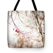 First Snow. Touch Of Gold Tote Bag