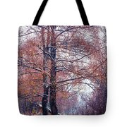 First Snow. Winter Coming Tote Bag