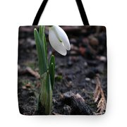 First Snowdrop Tote Bag