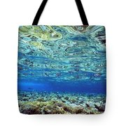 Fish And Coral Underwater Reflected In Tote Bag