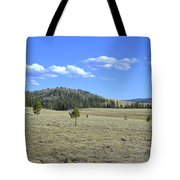 Fish Creek Valley II Tote Bag