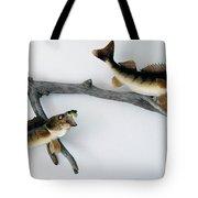 Fish Mount Set 03 A Tote Bag