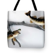Fish Mount Set 06 A Tote Bag