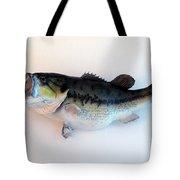 Fish Mount Set 07 A Tote Bag