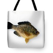 Fish Mount Set 08 A Tote Bag
