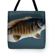 Fish Mount Set 10 B Tote Bag