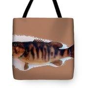 Fish Mount Set 11 B Tote Bag