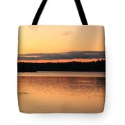 Fish Ring On The Lake Tote Bag