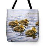Five Goslings In The Water Tote Bag