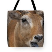 Flabbergasted Tote Bag