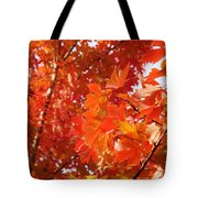 Flaming Maples Tote Bag