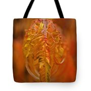 Flaming Sumac Tote Bag