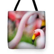 Flamingo 4 Tote Bag