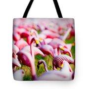 Flamingo 7 Tote Bag