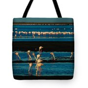 Flamingo Gathering Tote Bag