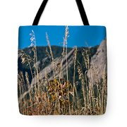 Flatiron Beauty Tote Bag