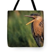 Fledgling Great Blue Heron Tote Bag