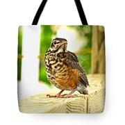 Fledling Robin Tote Bag