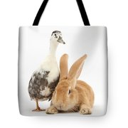 Flemish Giant Rabbit And Call Duck Tote Bag