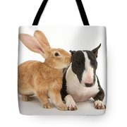 Flemish Giant Rabbit And Miniature Bull Tote Bag