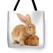 Flemish Giant Rabbit With Red Guinea Pig Tote Bag
