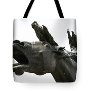 Flight Of The Valkyrie Tote Bag