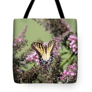 Flitter - Butterfly - Swallowtail Tote Bag