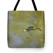 Floating Frog Tote Bag