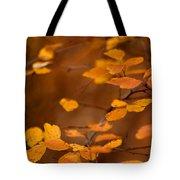 Floating On Orange Fall Leaves Tote Bag