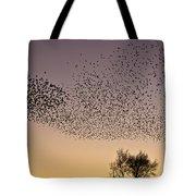 Flock Of European Starlings Tote Bag