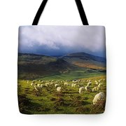 Flock Of Sheep Grazing In A Field Tote Bag