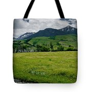 Flood Relief Tote Bag
