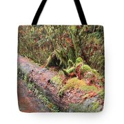 Flooded Bridge Tote Bag