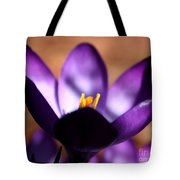 Catching Crocus  Tote Bag