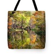Florida Autumn Secret Tote Bag