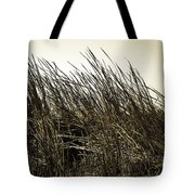 Florida Everglades 6 Tote Bag