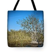 Florida Everglades 8 Tote Bag