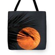 Florida Moonrise Tote Bag